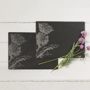 2 Slate Thistle Place Mats