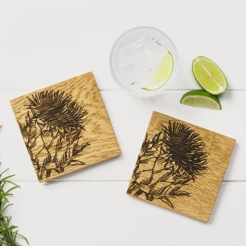 2 Thistle Oak Coasters