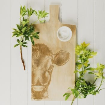 Large Sycamore Jersey Cow Paddle
